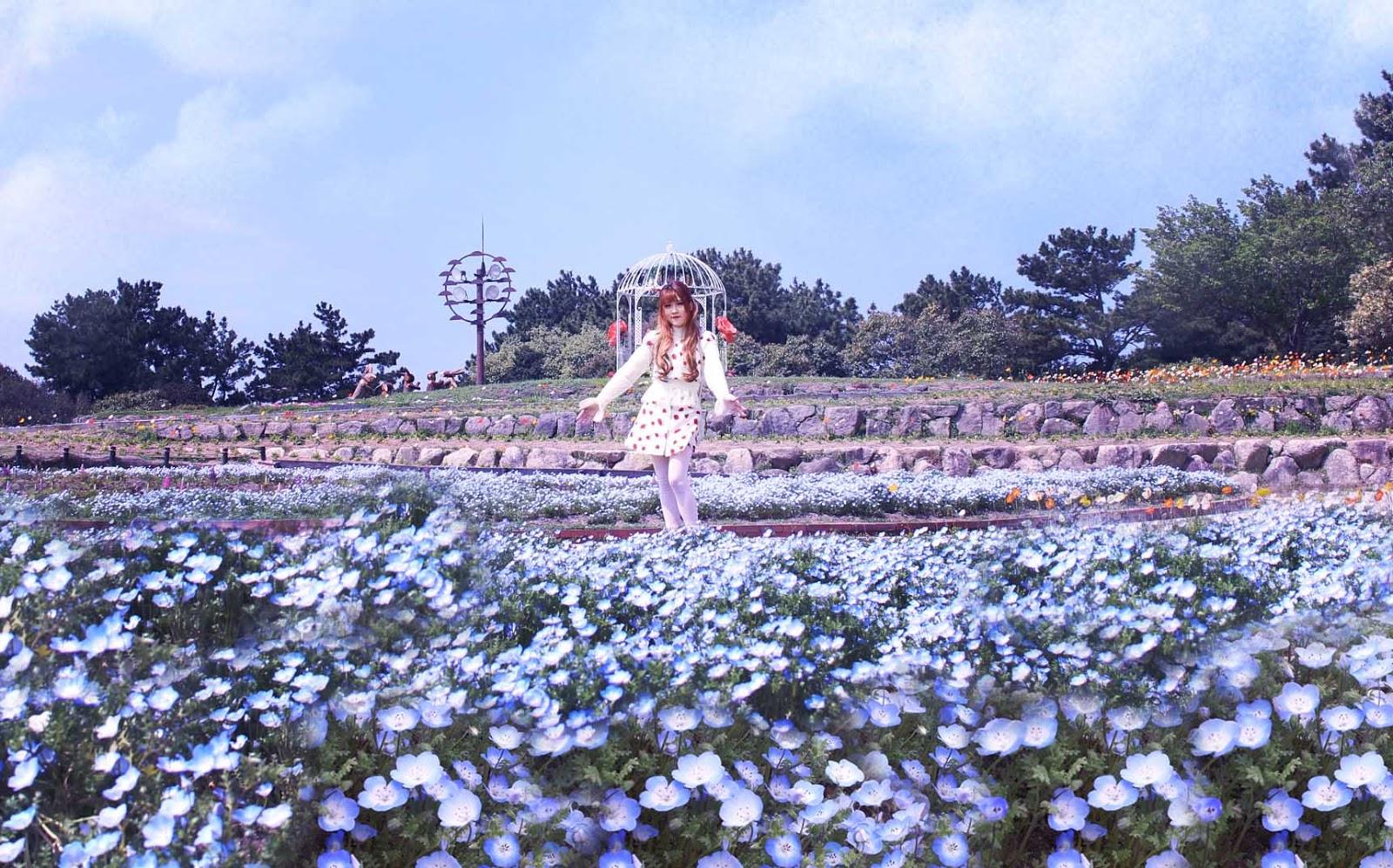 九州5天行程-福岡,門司,由布院,長崎,熊本