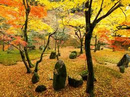 日本的鹿兒島:鹿兒島的11個景點